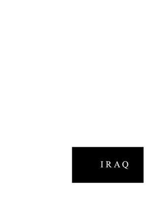 IRAQ IN FUTURE BOOK FORM - copyright Joan Braun